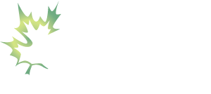 Maple Tree Consulting Logo featuring green maple leaf